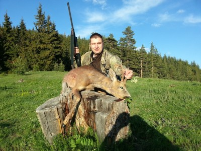 roe_deer_hunting_bulgaria13