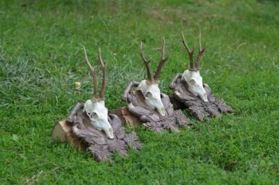 roe_deer_hunting_pereliytsa2