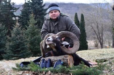 mouflon_bulgaria_2