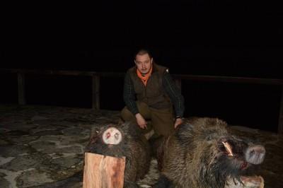 wild_boar_bulgaria_1