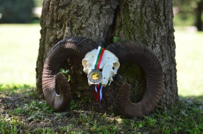 mouflon_hunting_in_Bulgaria7